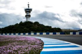 Jerez F1 2014